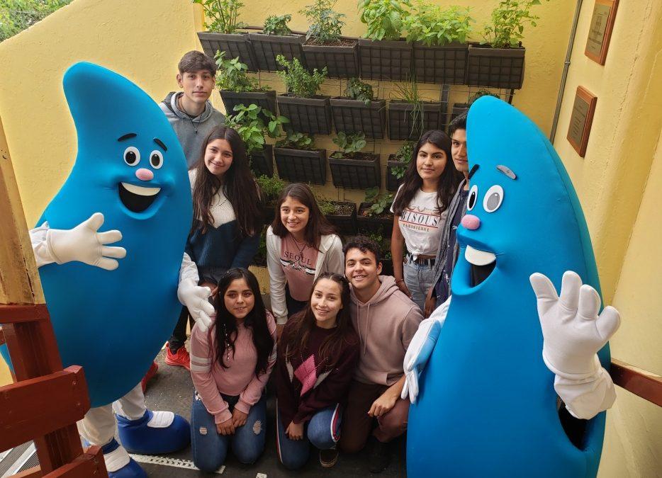 Liceo José Cortés Brown implementa jardines verticales y áreas verdes con apoyo de Esval