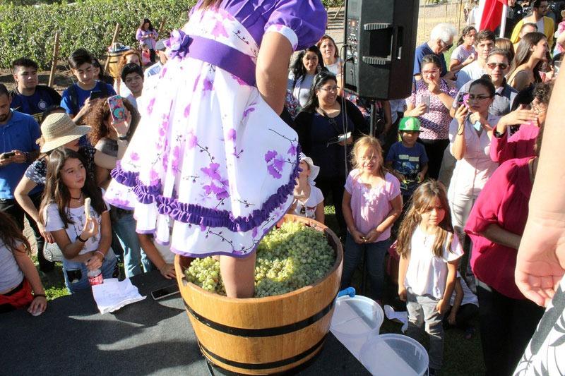En cinco comunas de la región de Valparaíso se celebran las tradicionales Fiestas de la Vendimia