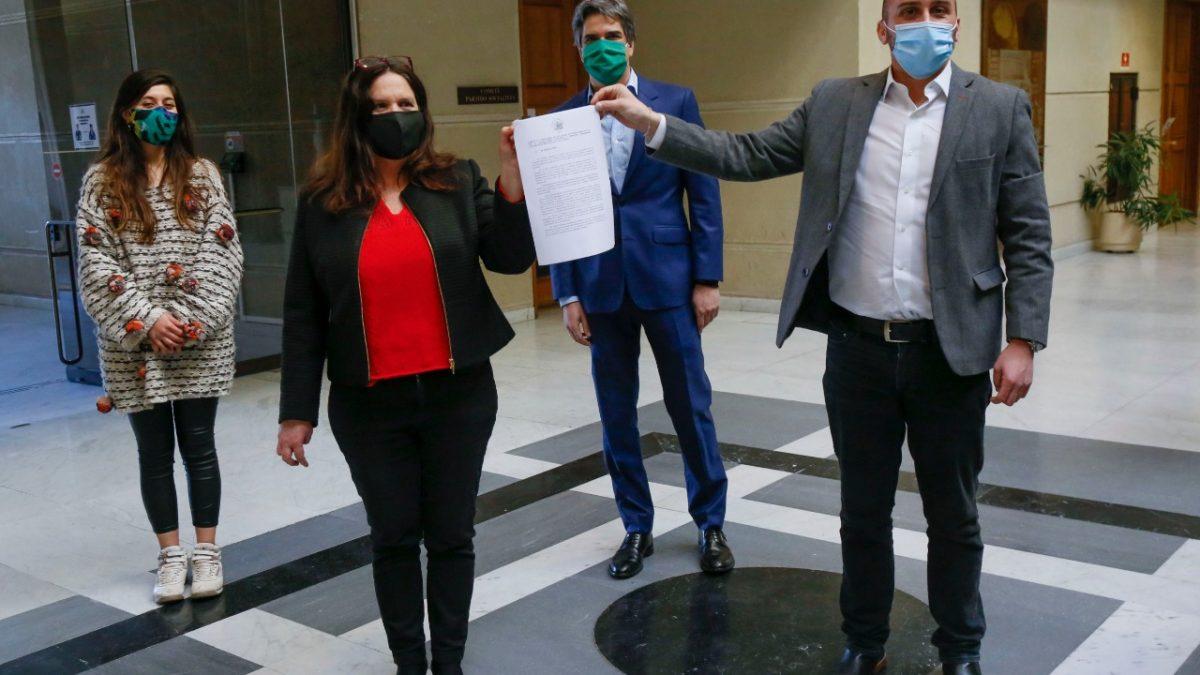 Presentan proyecto de ley para suspender cobro de multas y evitar revocación de patente de alcoholes a locatarios afectados por la pandemia