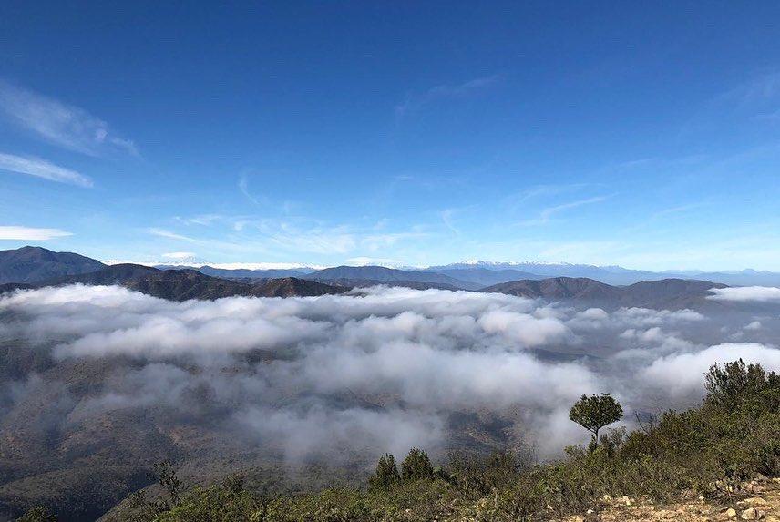 Cerro Santa Inés es declarado como nuevo Santuario de la Naturaleza en la Región de Valparaíso
