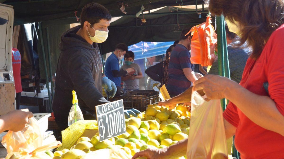 Feria Diego de Almagro de San Felipe: Desde este domingo se incorporan puestos de bazares, paquetería y antigüedades