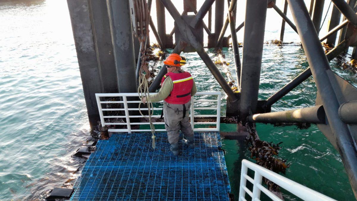 Restauración de Muelle de Quintay en su fase final