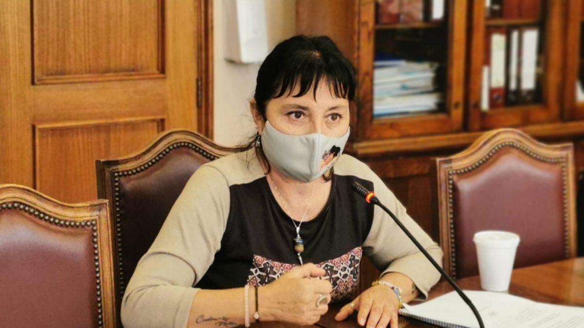 Avanza proyecto de ley de diputada Marzán que prohíbe que personas deudoras de pensión de alimentos puedan postular a cargos de elección popular.