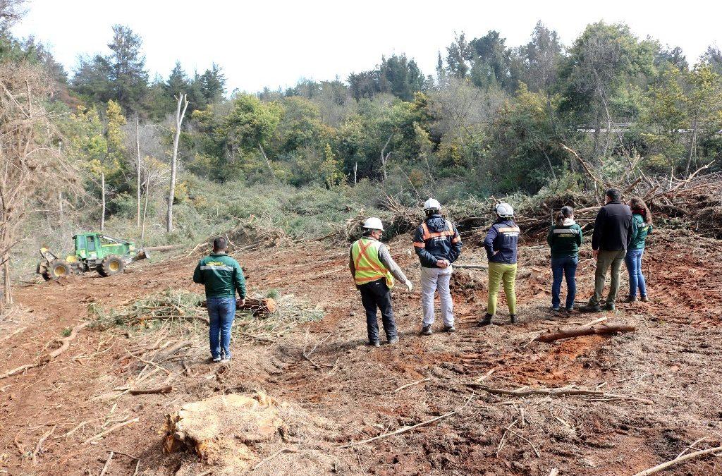 Refuerzan trabajos en las zonas de interfaz para prevenir incendios forestales
